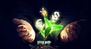 Etoro investir avec le trading du Forex pour un investisseur débutant
